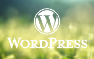 【無料テーマ】個人的に興味のあるWordPressテーマ2選